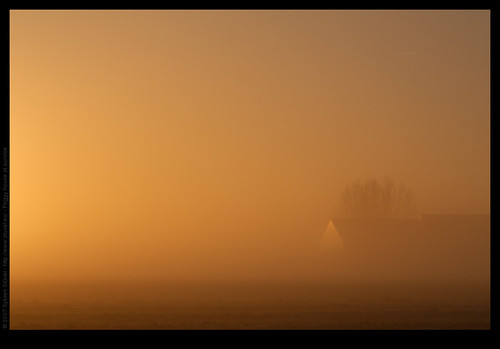 Foggy house at sunrise
