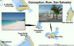Conception-Rum
