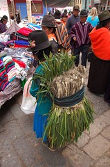 A woman carries onions to sell at the market