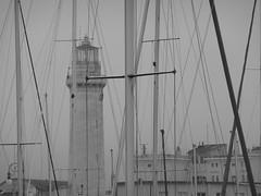 Verticalismi (edhelerdie) Tags: city sea lighthouse faro boats lumix mare barche bn panasonic monica lanterna trieste golfo citt dmctz3 panasonicdmctz3 panasoniclumixdmctz3