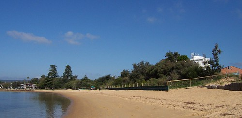 Vegetated dunes at Ettalong Beach