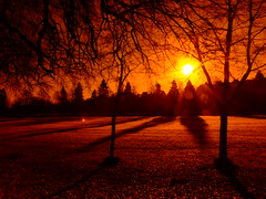 LONG SHADOWS. (the water watcher 05.) Tags: park trees light orange white black tree nature yellow sunrise dawn star scotland lightandshadows shadows branches silouette borders daybreak helios morningstar hawick longshadows scottishborders roxburghshire wiltonlodgepark fujifinepixs6500fd