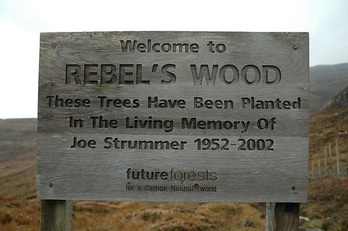 Entrance To Rebel's Wood
