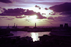 (zeninho ) Tags: city november autumn light sunset sea sky italy sun lighthouse color colour bird colors silhouette backlight clouds port landscape italia seagull postcard violet funky boring genova porto zena lantern parallel autunno gabbiani seaport lanterna 2007 citt underexposure november2007 zeninho