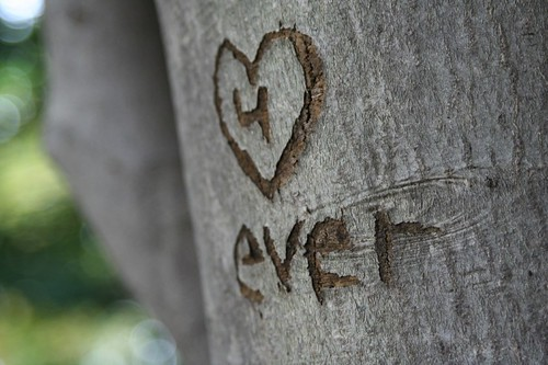 4 ever, by Caryn Stein, Creative Commons: Attribution BY-NC-ND 2.0.