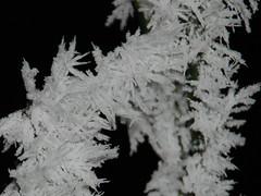 Black Ice (K13) Tags: winter snow black ice nikon nieve hielo escarcha 18135 d80 ka13