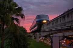 Disney - Monorail Blue Polynesian (Express Monorail) Tags: sunrise geotagged orlando florida disney disneyworld monorail wdw waltdisneyworld walt poly prettysky polynesian disneyspolynesianresort monorailblue disneyphotochallenge disneyphotochallengewinner geo:lat=28404948 geo:lon=81584883