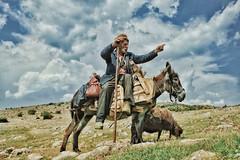 That Way (AIeksandra) Tags: mountain beard sheep shepherd south serbia donkey balkan pirot staraplanina oldmountain balkanianmountains serbiansanchopanza