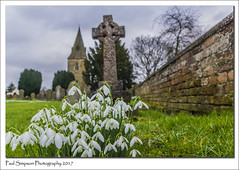 All Saints, Misterton, Nottinghamshire (Paul Simpson Photography) Tags: church paulsimpsonphotography churchyard religion snowdrops flowers wall brickwall churchspire misterton nottinghamshire celticcross graves burial sonya77 february2017