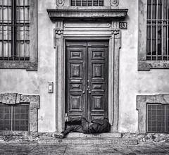 Reietti (AdrianArt) Tags: homeless outcast abbandono povertà street