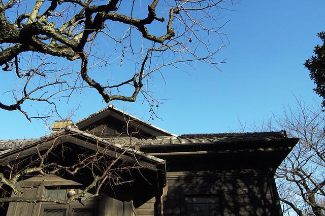 110108_140326_乃木神社