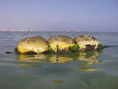 (the4c's) Tags: camera vacation holiday wet water pool cole pentax tunisia slide waterslide waterfun waterproof w20