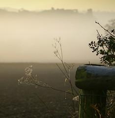 Dreams (annicariad) Tags: mist wales carmarthenshire cymru wfc dryslwyn annicariad welshflickrcymru