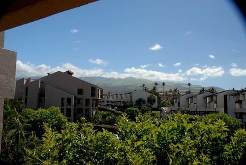 Maui 08