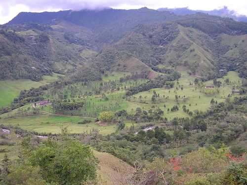 Montañas del Quindio
