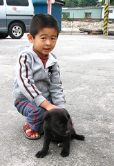 A Boy and His Dog (Danburg Murmur) Tags: geotagged taiwan  hualien    royaleunuchchickenrestaurant geo:lat=24105325 geo:lon=121618888