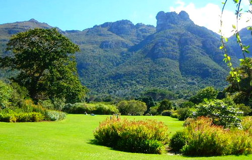 Kirstenbosch_mountain