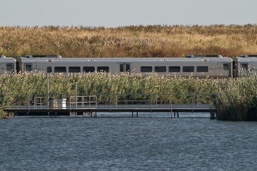 Photo: passing train