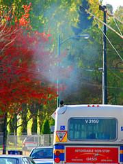 Diesel bus exhaust.