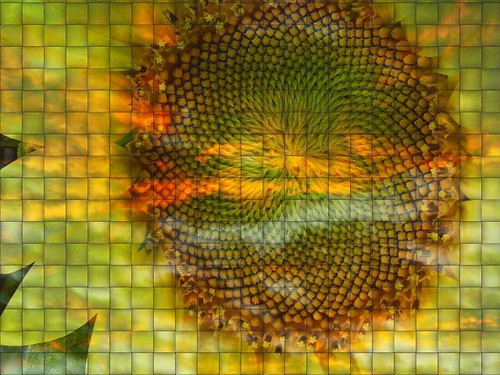 woven sunflower and clouds