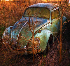 Bugged Out (edwardleger) Tags: abandoned car rural louisiana beetle 2008 volkswagon supershot mywinners platinumphoto diamondclassphotographer excellentphotographerawards theperfectphotographer edwardleger goldstaraward edwardnleger