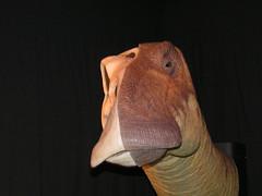 I dinosauri a Cremona