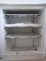 The Bad Freezer