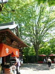 Kanzeon Temple 観世音寺