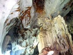 pet cave thailand04