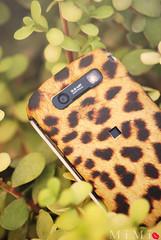 Tiger (M ï M ï) Tags: black berry zoom sony tiger bb a300 mïmï