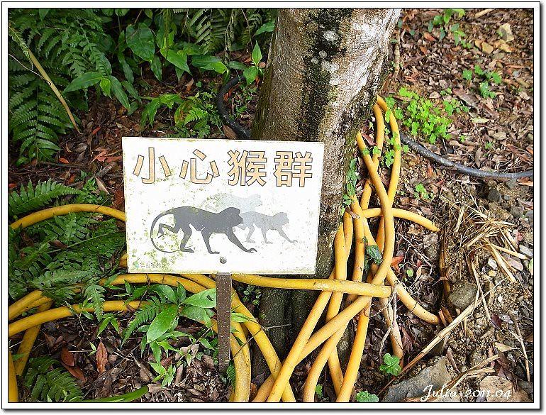 仁山植物園 (15)