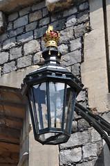 Bulbs in an old lantern
