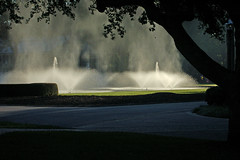 Fountains in Mist 1