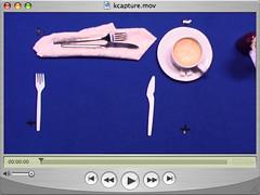 Original Footage (For DVD Menu Project)