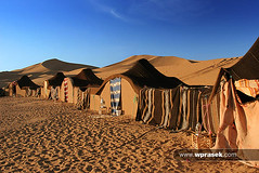 Sahara Desert bivouac tents (wprasek) Tags: morning camping camp orange brown house hot home sahara sunrise ma carpet early tents sand desert outdoor sandy hill earlymorning dry tent morocco fabric rug sheet nomad remote sunrises cloth residence shelter sanddune makeshift campsite sunup daybreak nomadic floorcovering dominantcolor dominantcolour bivouac ergchegaga temporarystructure nonpermanent westernsaharadesert folioarchitectureexteriors berberdesertcampsite warrenprasek xoodu wprasek wwwxooducom wwwwprasekcom