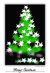 Natal Luz / Merry Christmas (Omar Junior) Tags: christmas xmas bon color tree luz colors natal weihnachten cores stars geotagged 50mm star navidad diy dof pentax god bokeh d magic estrela estrelas junior 12 merry feliz jul nol arvore omar ist natale rs hdr nadal canela pentaxistd 2007 boi joyeux buon gramado starshaped  frhliche feliz       starshapedbokeh bokehstar createyourownbokeh geo:lat=29379824 geo:lon=50873131  estit