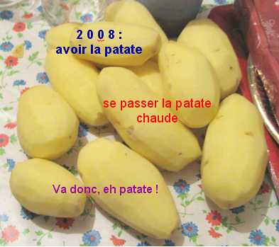patates2008
