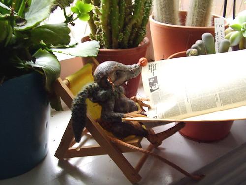 Rudi ließt - Rudi reading