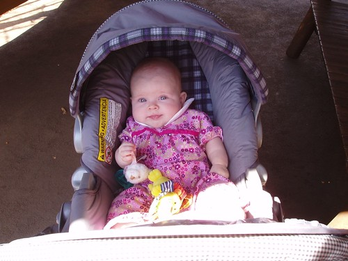Claire enjoyed most of the zoo in her stroller
