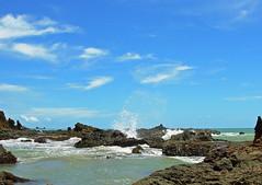 Praia de Tambaba / Tambaba Beach (Pedro Cavalcante) Tags: nature nikon l1 natureza coolpix nikoncoolpix coolpixl1 nikoncoolpixl1 nikonl1 pedrocavalcante