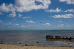 IMG_2564 (timothylhendrix) Tags: beach aircraft c17 oahuhawaii kualoaregionalpark