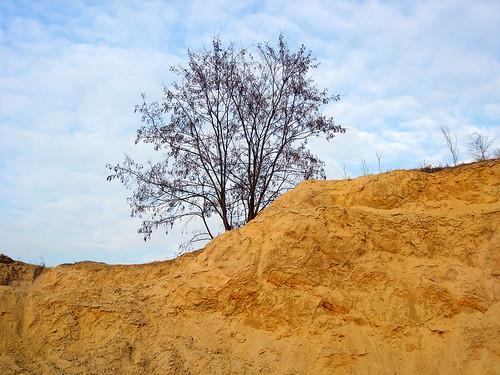 Sandbank 1