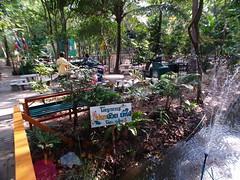 bangnampueng (Set)