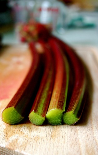 Rhubarb is beautiful