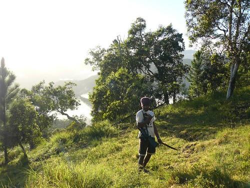 Coup de chasse Bopope Mai 2008 #9 : herbert