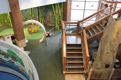 Wickiup Hill Learning Center - 05 (TaylorStudiosInc) Tags: wickiup wickiuphill ia todville taylorstudios tree deadtree treemodel oak deadoak kidsarea overview oversized frog magnifyingglass staircase equisetum horsetail peekthrough naturalhistory