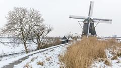 Kinderdijk anno 1740 & Kinderdijk today (Wim Boon Fotografie) Tags: kinderdijk koud wimzilver wimboon windmill winter canoneos5dmarkiii sneeuw snow winterlicht windmills wipmolen winter2017 canonef2470mmf28liiusm