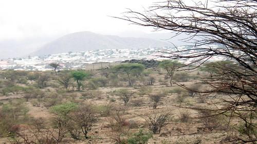 Landscape around Boorama