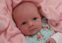 Hayden Newborn 1