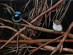 Pair of Superb Blue Wrens (jennie-robyn) Tags: bird birds acrylic originalpainting wren australianbird bluewren superbbluewren